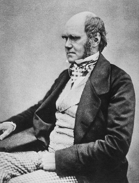 Blog 7 - Darwin