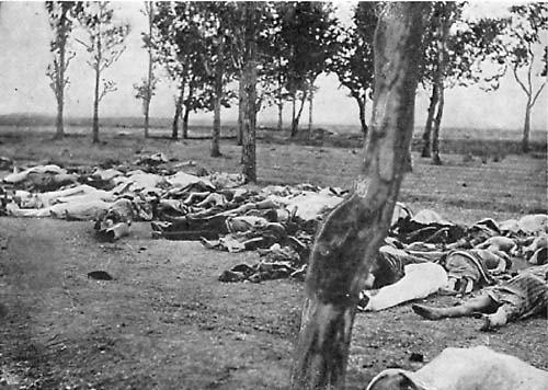 Blog 8 - Armenian Genocide