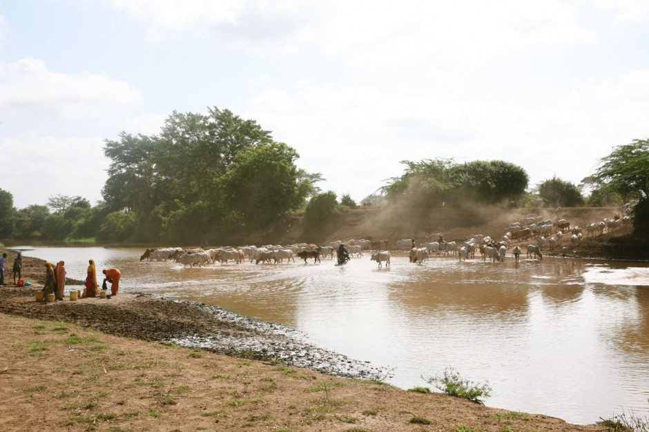 The Orma community of Kipao are traditional pastoralists, raising cattle, sheep, and goats along the Tana River.