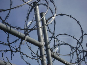 """""""Razor Wire Bunch"""" by Smithers7 - Own work. Licensed under Creative Commons Attribution 3.0 via Wikimedia Commons - http://commons.wikimedia.org/wiki/File:Razor_Wire_Bunch.JPG#mediaviewer/File:Razor_Wire_Bunch.JPG"""