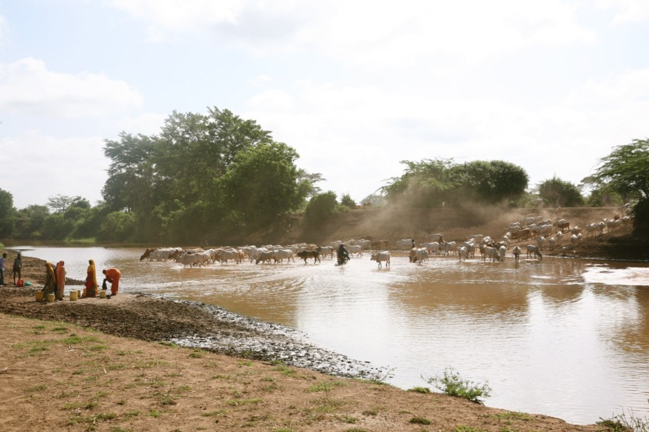 The Tana River