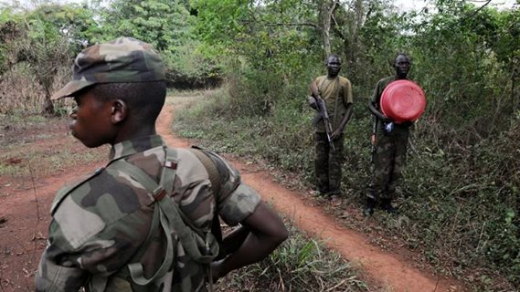 Armed men in the brush in Masisi